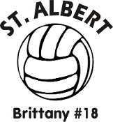 Vinyl sticker - Volleyball (no mascot) with name below ball