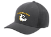 Louisville Male Alumni STC40 Graphite hat